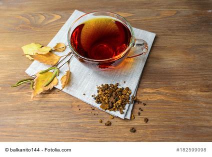 Chaga Pilz Kaffee Erfahrungen Wirkungen