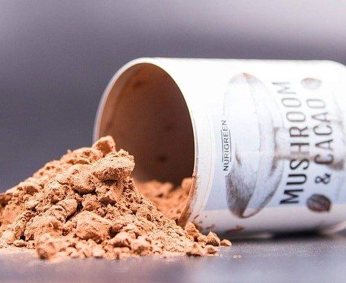 nurigreen mushroom kakao